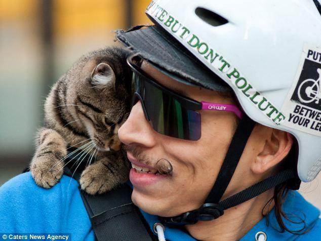 猫を肩に乗せて配達するにーちゃんがイケメンすぎると話題にwwwwwwこれが猫の宅急便かwwwww:ハムスター速報