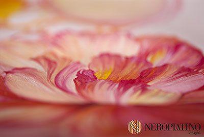 MC002E disponibile su http://www.neroplatino.com/store