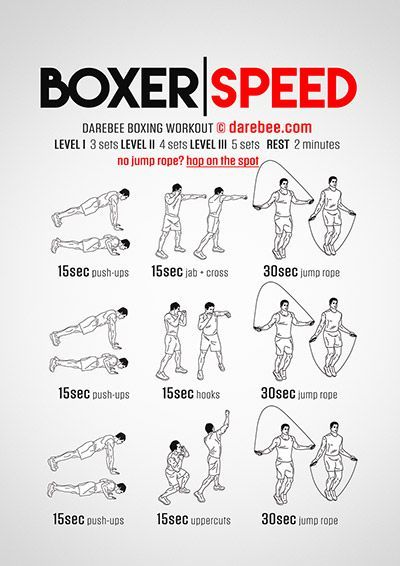 Boxer Speed Workout                                                                                                                                                                                 More