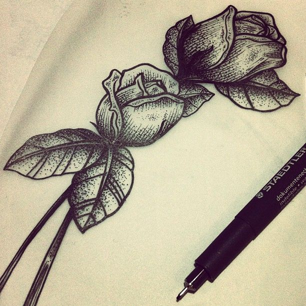 ink sketch of roses with stems tattoo
