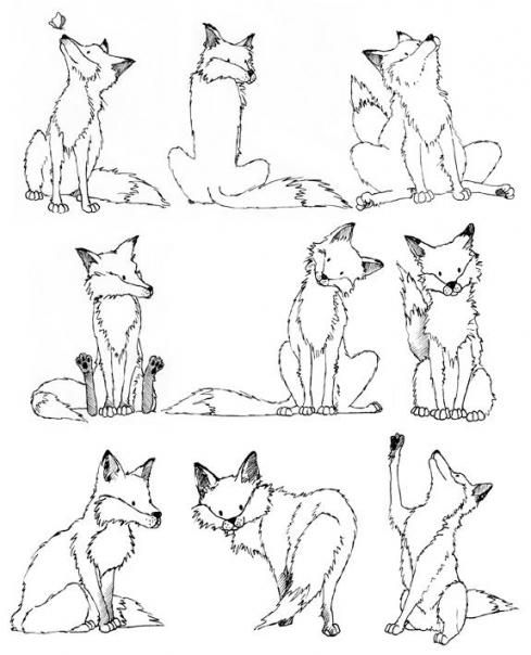 Line Drawing Fox : Best ideas about fox drawing on pinterest simple