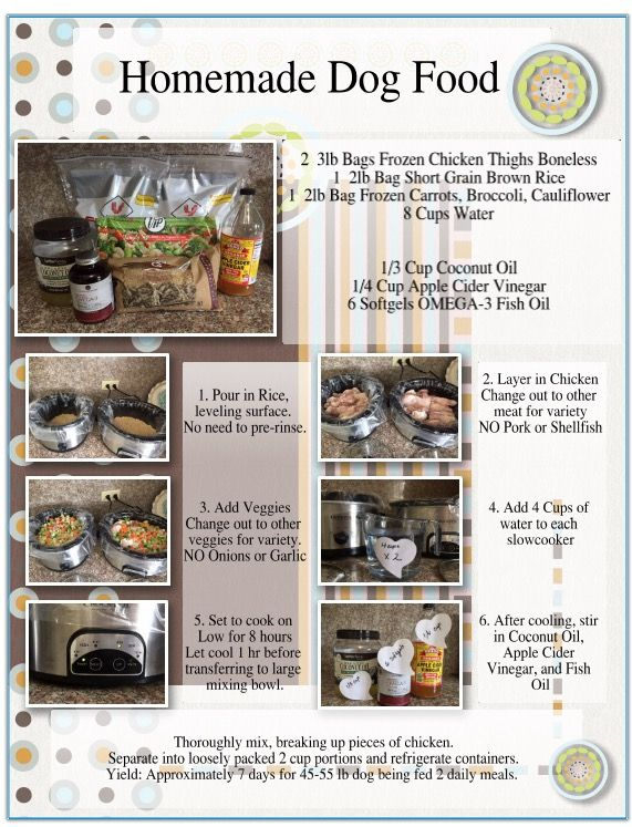 How to cook healthy food for my dog howsto co for How much fish oil should i give my dog