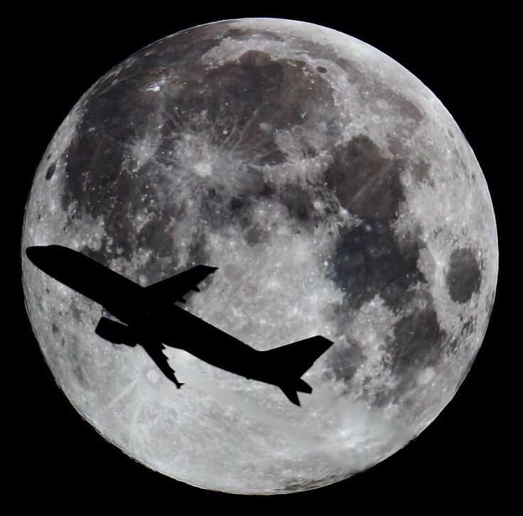 "jwastronomy: "" Full Moon with Plane Canon 60D 6"" Newtonian ISO 100 1/500s After 2 Hours of praying and observing the Flightradar i finally got a near Airplane with the Full Moon. What a shot! I´m very happy and proud of this Picture. I hope you enjoy..."