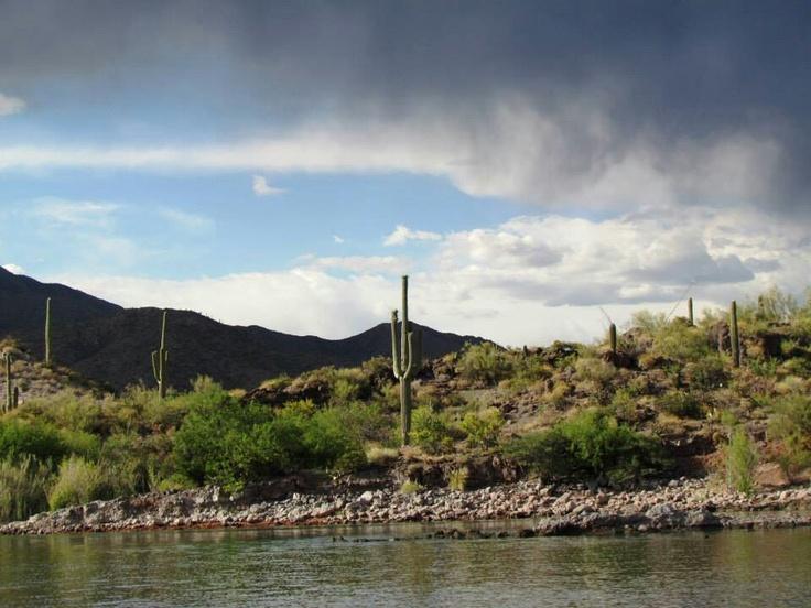So beautiful apache lake az things i love pinterest for Apache lake fishing