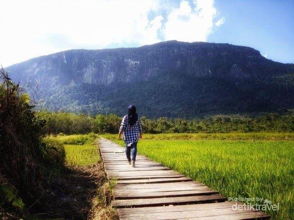 10 Pemandangan Kalimantan Inilah Daftar Tempat Wisata Yang Layak Anda Kunjungi Di Yogyakarta Provinsi Yang Kaya Akan T Di 2020 Pemandangan Kalimantan Taman Nasional