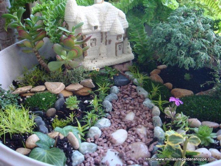 https://i.pinimg.com/736x/99/18/78/9918782f9ae42736492db181152ea34a--mini-gardens-miniature-gardens.jpg