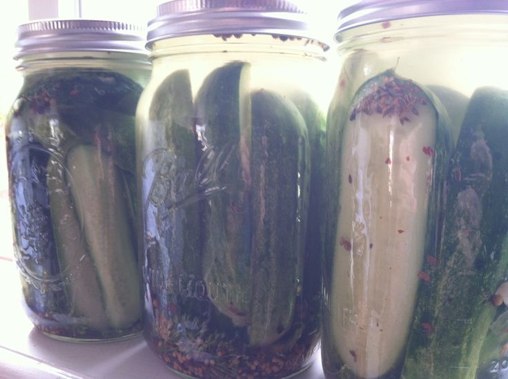 """The BEST """"no canning skills needed"""" homemade pickle recipe"""