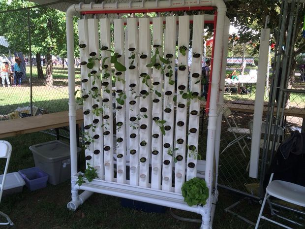 Amazing hydroponic garden with complete instructions.