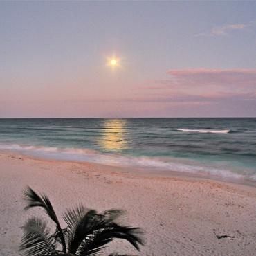 Playa Mexico, Tulum Eco- Chic pop up beach hotel.