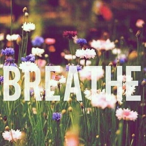 #quote #breathe #mindful #gratitude #meditation #lovelorelai