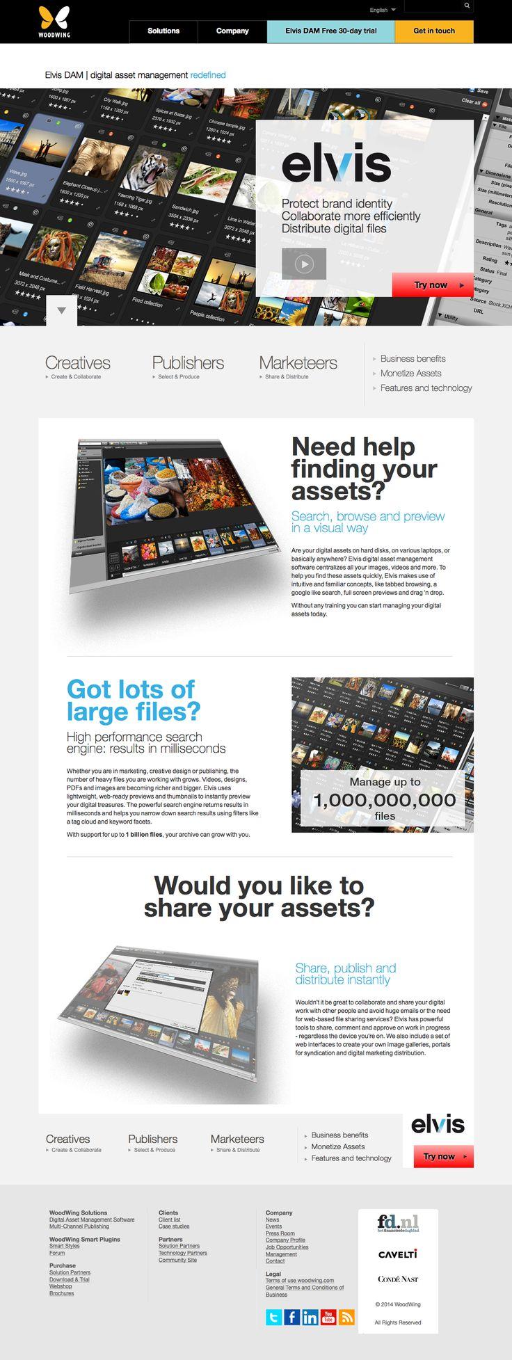 Webdesign Elvis Digital Asset Management