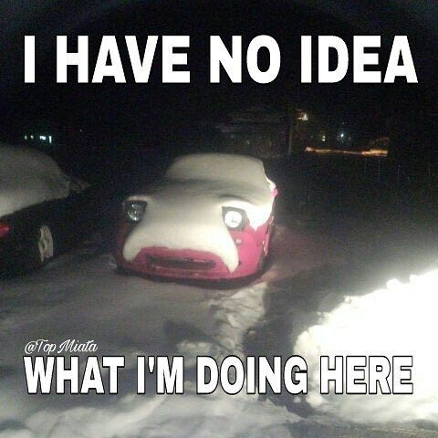 99191146cfba571cc4891bc767ac4ce2 funny memes car memes 51 best miata memes images on pinterest mazda roadster, mk1 and