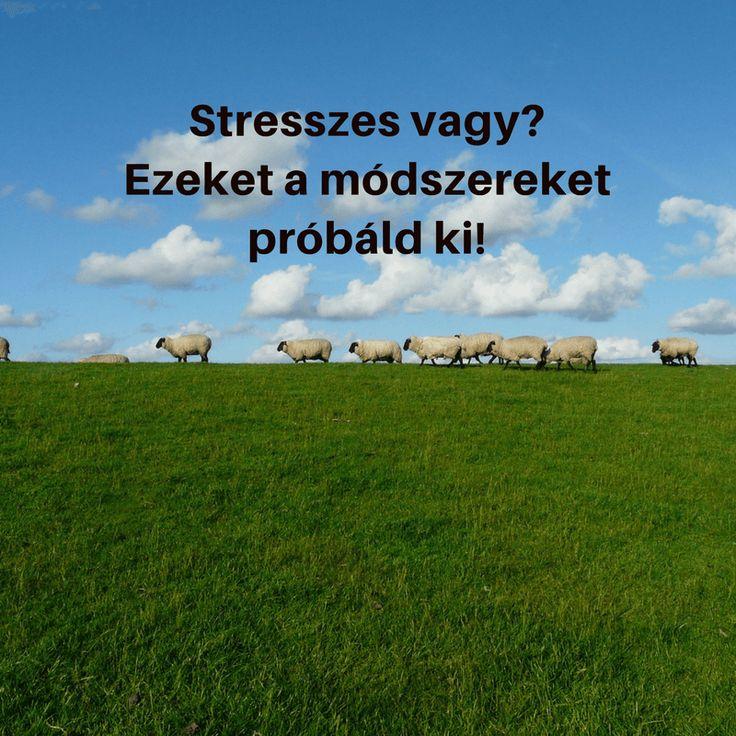 Stresszkezelési módszerek 1.