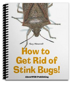 How to get rid of stink bugs a step by step formula for - How to get rid of stink bugs in garden ...