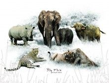 The Big 5 – Placemats |   These placemats showcase Africa's iconic Big 5, in vibrant detail. |   Buy online at NguniGalore.com - delivery anywhere in South Africa is FREE