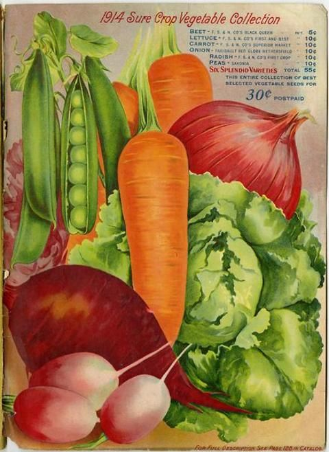 """Just inside the back cover of the 1914 Farmer Seed & Nursery catalog, gardeners were tempted with this assortment of """"Sure Crop"""" vegetables.  The full color images were incredibly mouthwatering.  The collection was regularly priced at 55 cents, but could be had for only 30 cents if purchased from this catalog.   Farmer Seed & Nursery originated in Faribault, MN in 1888. Andersen Horticultural Library hosts a collection of vintage Farmer Seed & Nursery catalogs."""