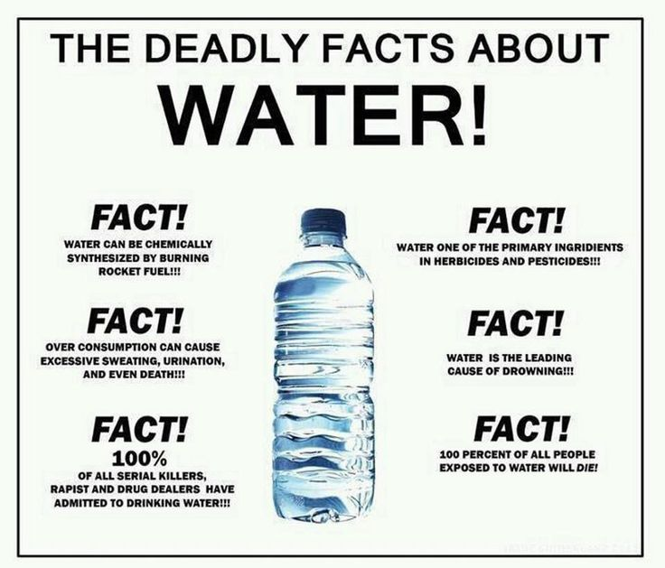 From Things To On Running Your Facts Facts Stop Water Owner Away Chewing Dog When Gone You're How Police K9
