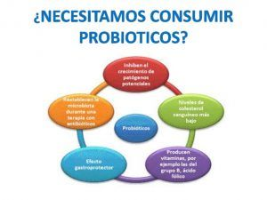 Probióticos Para Adelgazar y Bajar de Peso