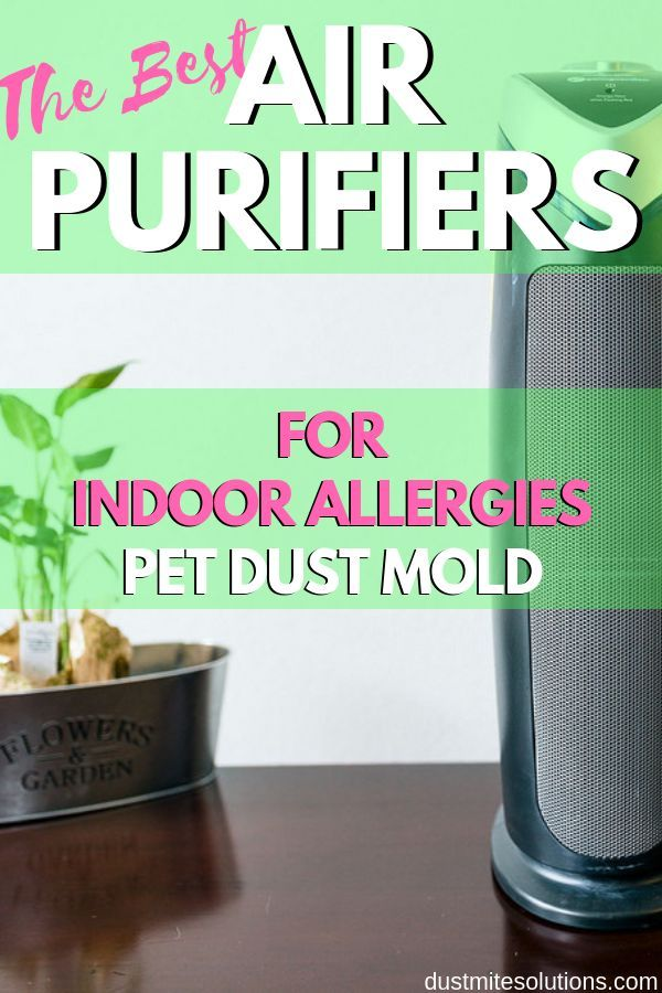 9 Best Hepa Air Purifiers For Allergies And Asthma Dust Mold And