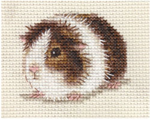GUINEA PIG, CAVY ~ Full counted cross stitch kit | eBay