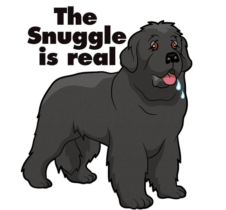 "If you own a Newfoundland dog, then you know this is very true – the ""Snuggle"" is REAL! Sure to get a laugh – this would be an adorable Christmas present for your Newfie lover. • Buy this artwork on apparel, stickers, home decor, and more."