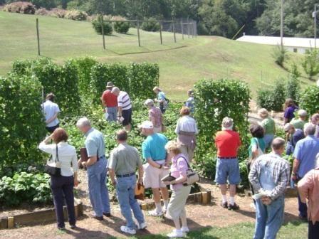 Organic Gardening and Green Beans Seminar