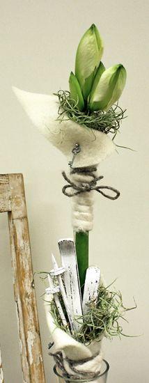 http://holmsundsblommor.blogspot.se/2011/12/daligt-skidfore-i-holmsund.html Vit amaryllis Skidor Ull