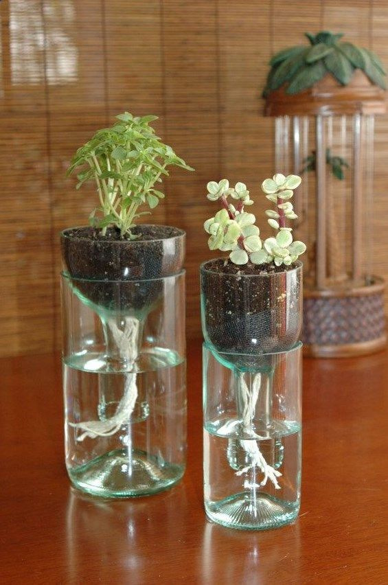Great use for old wine bottles an could use as wedding center pieces!