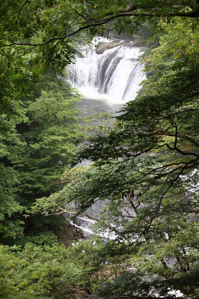 https://flic.kr/p/6Qm71F   Namase Waterfalls / 生瀬の滝(なませのたき)   Namase Falls, Daigo-machi(town) Kuji-gun(County) Ibaraki-ken(Prefecture), Japan  茨城県久慈郡(いばらきけんくじぐん) 大子町(だいごまち) 生瀬の滝(なませのたき)