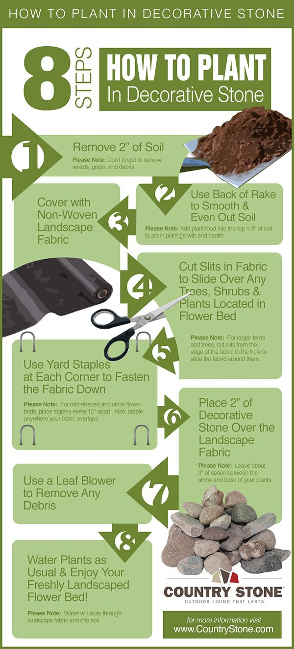 Want a permanent solution for your flower beds? Then decorative stone is the product for you! You will find this 8 step guide helpful when planting your trees, shrubs, flowers, and plants in decorative stone. #infographic #rocks #stones #mulch