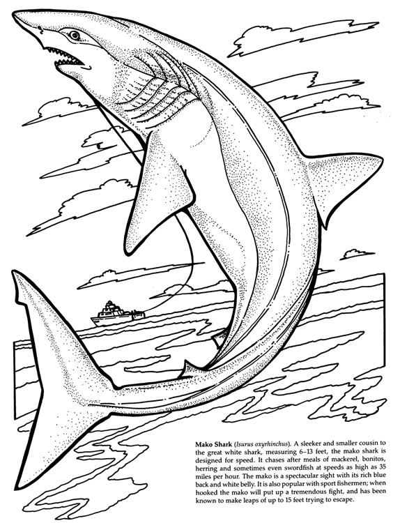 Lemon Shark Jumps Out Of The Water Coloring Page From Category Select 27260 Printable Crafts Cartoons Nature Animals Bible And Many