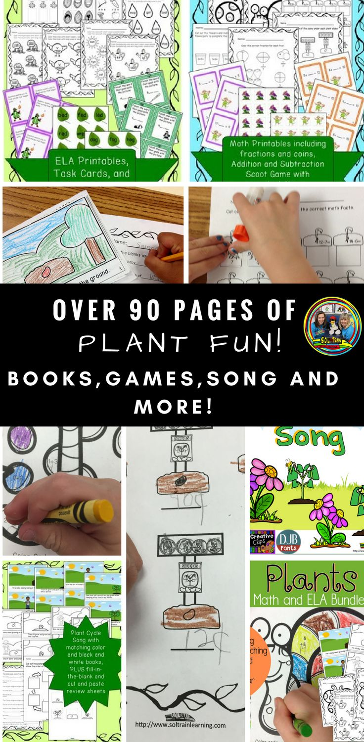 There is so much in this plant unit! Your students will have fun singing the Plant song,  coloring the book, playing scoot, reading around the room, cutting and pasting and more! #plantcycle#activities#sciencekids#soltrainlearning#teachersfollowteachers#firstgrade#kindergarten#phonics#languagearts#math#mathgames#vowels#teachingresources#homeschool