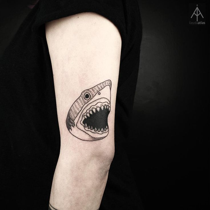 traditional shark tattoo idea