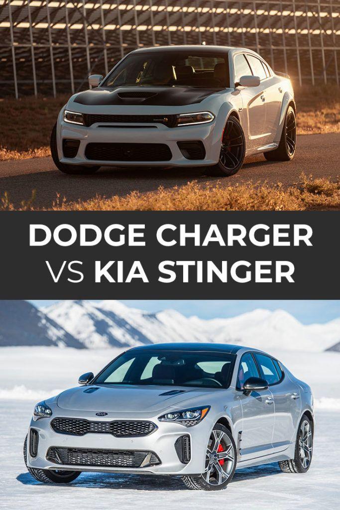 Dodge Charger Vs Kia Stinger In 2021 Dodge Charger Kia Stinger Kia