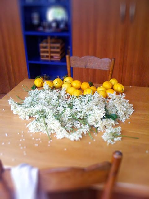 Cooking with flowers: Elderberry Flowers Syrup and Elder flower Tea