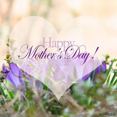 Mothers day card with flowers and heart. Purple flowers for mother day. Mothers day background and mother day flower. Mothers day gift. Happy mother's day