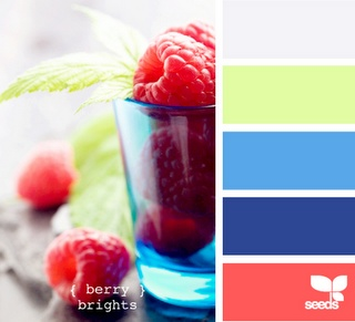 RaspberrrryyyyColors Combos, Design Seeds, Berries Bright, Room Colors, Colors Schemes, Blue Gray Bathroom, Summer Colors, Bright Colors Palettes, Colors Palettes Yellow Bright