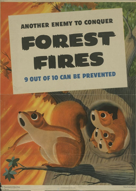 United States Forest Service 1944 Another Enemy To Conquer Forest Fires 9