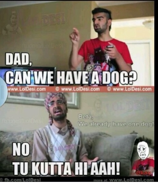 """Dad can we have a dog?"" ""Ti kutta hi hai"" translation: ""you're the dog"" BURNNNN"