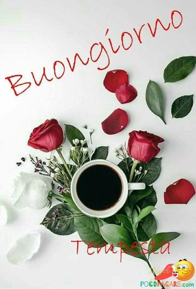 Immagini belle di buongiorno nuove 48 buon giorno for Immagini divertenti buon giorno