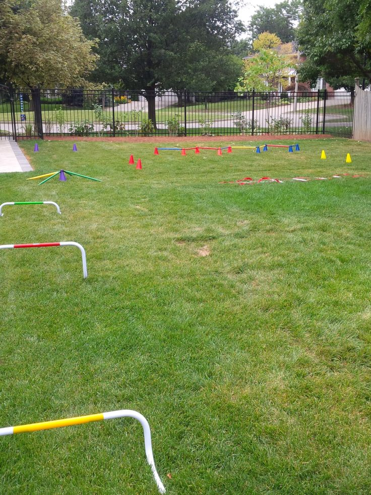 Our very own American Ninja Warrior Course. The 8 year old's birthday party was a hit!