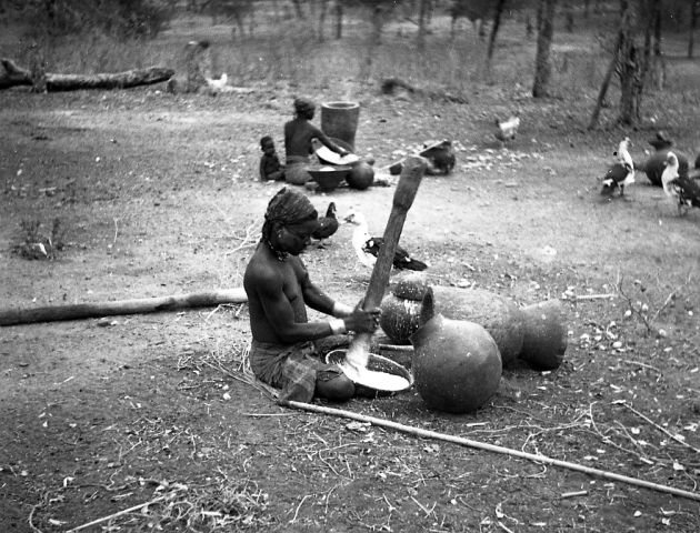 Tsonga girl mashing maize in a grater, Balul, Gaza Province, Mozambique. These photographs were taken on an expedition by W. Punt and others to Portuguese East Africa, July 1941, to trace the Louis Trichardt and Van Rensburg routes.