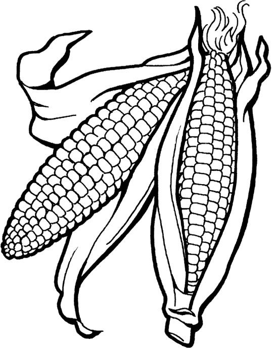 Fall fruit coloring pages ~ Vegetables Corn Is Good For The Body Coloring Pages | fall ...