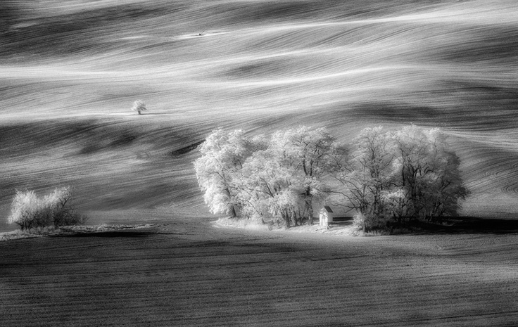 InfraRed Photography  Southern Moravia, Czech Republic, Autumn 2012  http://www.facebook.com/Piotr.Krol.Photography