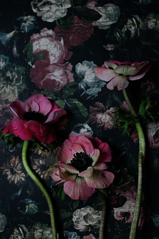 HOME & GARDEN: 73 inspirations pour mettre des couleurs sombres dans sa déco
