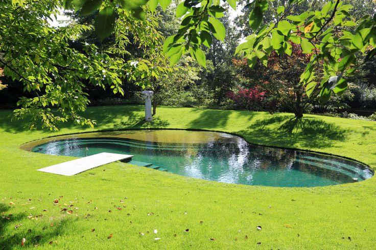 Плавание Пруды - Водный Сад Киршнер