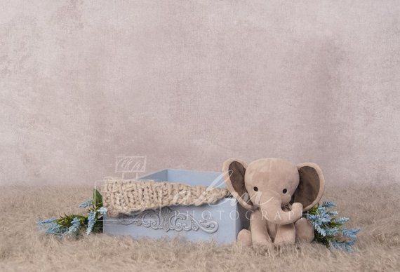 6x6FT Vinyl Backdrop Photographer,Pale Blue,Japanese Nature Wildlife Photo Backdrop Baby Newborn Photo Studio Props