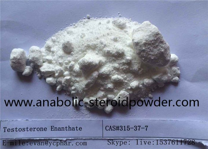 Testo-sterone enanthate dosage:Average Dose:  250-1000 mg/week Health&Beauty,Body building,Muscle gain,Fat burner  we can use it in our life .Testo-sterone Enanthate can be an anabolic steroid that is certainly suitable for almost all degrees ofutilize. That is the right anabolic steroid the very first time anabolic steroid and beequally successful regarding .Especially the girls, we can use it to bodybuilding..if u want to realize more pls contact me my friend. evan  E-mial:evan@ycphar.com