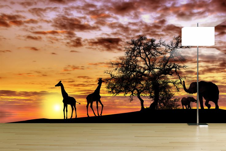 A beautiful wall mural decals removable wallpaper sticker for African sunset wall mural