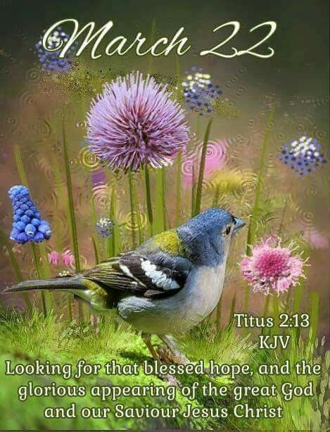 March 22~~J~ Titus 2:13 | Days | Scripture of the day